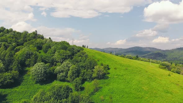 Aerial Flying Over a Forest of Green Trees. Background of Green Trees. Drone Footage