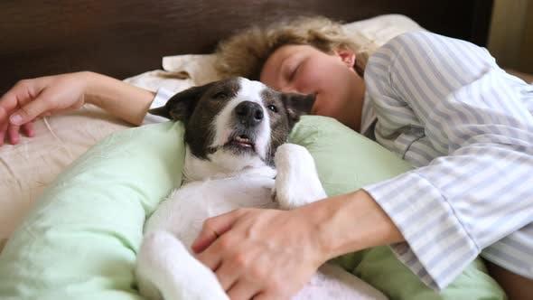 Frau Im Schlafanzug Schlafen Mit Lustigen Hund Im Bett