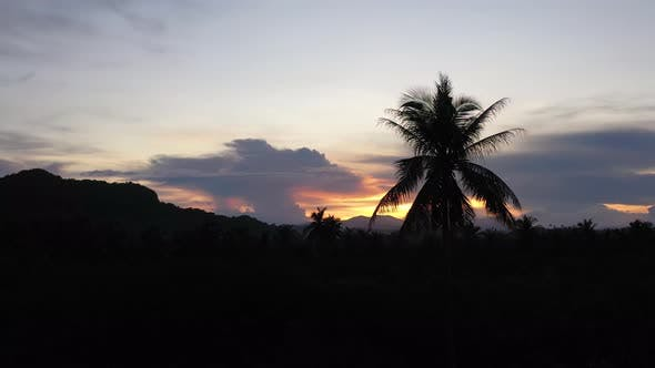 Thumbnail for Sunset Over a Tropical Island. Philippines Nature in the Evening.