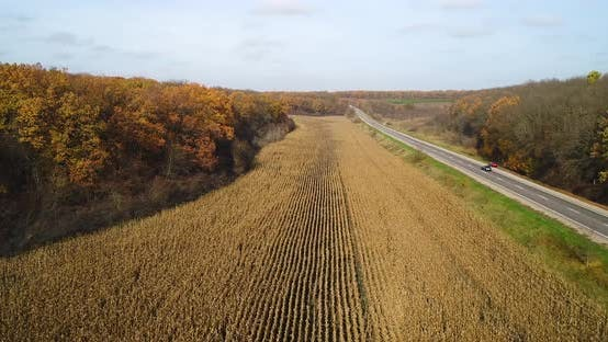 Thumbnail for Aerial View of Road in Autumn Forest at Sunset Near the Corn Field