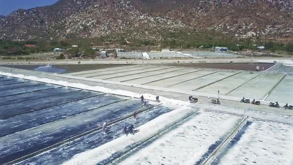 Thumbnail for Workers Do Different Jobs on Salt Fields Under Sun