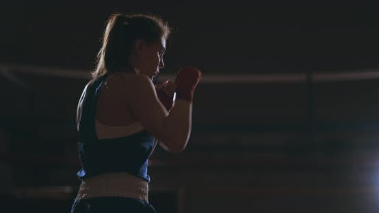 Thumbnail for Athletic Woman Doing Fitness Exercises To Box and Practice Self-defensive Techniques