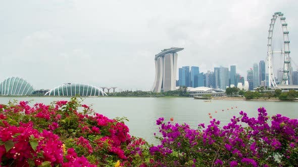 Thumbnail for Singapore Cityscape with Flowers