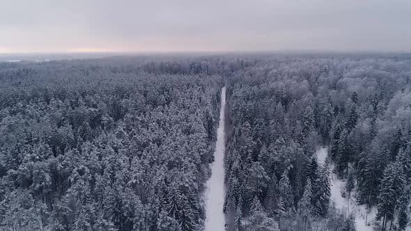 Aerial view of a snowy forest in Estonia