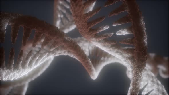 Thumbnail for Loop Double Helical Struktur der DNA-Strang Nahaufnahme Animation