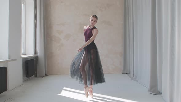 Thumbnail for Professional Performance of a Fragile Ballerina Against the Background of Large Panoramic Windows