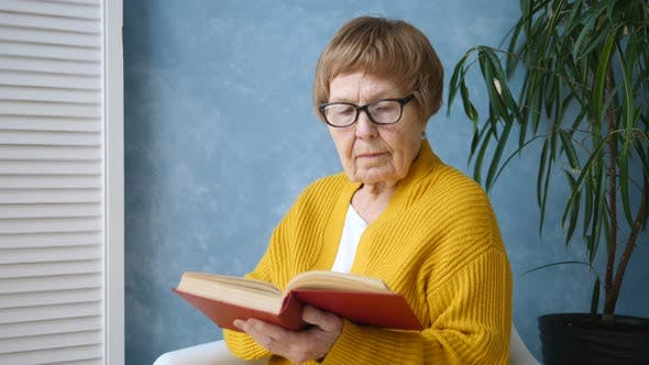 Thumbnail for Grandmother Reading A Book