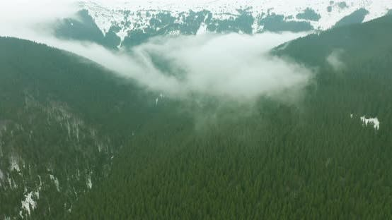 Thumbnail for Aerial View of Amazing Green Valley. Drone Flying Above the Forest and Fog.