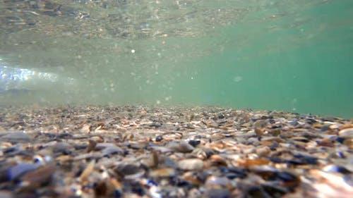Sandy Sea Bottom Underwater Background