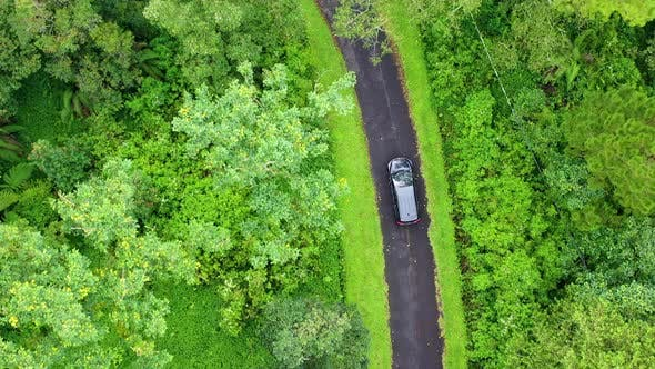 Thumbnail for Travel by car, Aerial view on the field and  road, Landscape in the Indonesia at the day time