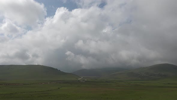 Thumbnail for Meadows on High Plateau