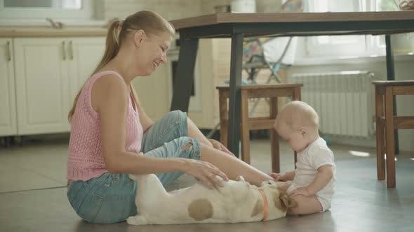 Thumbnail for Petit bébé et sa mère jouant avec chien animal