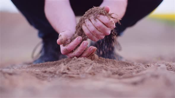 Thumbnail for Farmer Examining Organic Soil in Hands, Farmer Touching Dirt in Agriculture Field