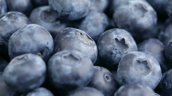 Thumbnail for Fresh blueberries, fruit background