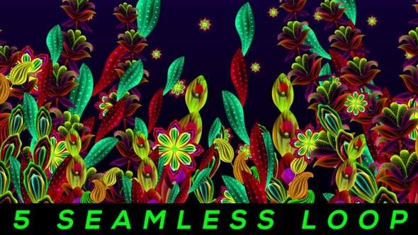 Thumbnail for Flower Festivals