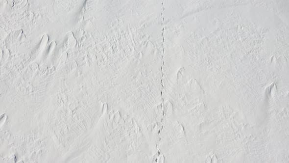 Thumbnail for A Man Is Walking Along a Snow Field. Loneliness. View From Above