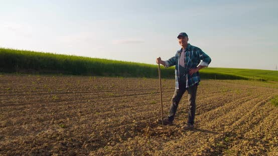 Cover Image for Successful Farmer Holding Hoe at Farm Agriculture