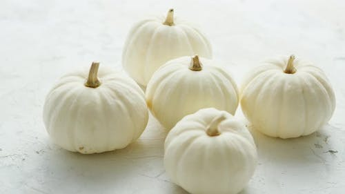 White Small Pumpkins on the Table