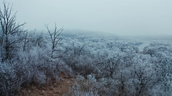 Thumbnail for Beautiful Winter Landscape of Nature