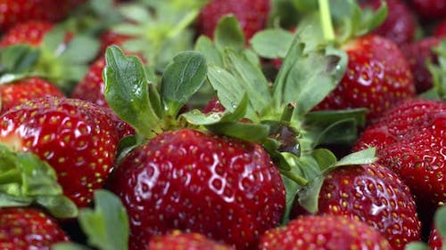 Close Up And Detailed Shot Pile Of Fresh Strawberry