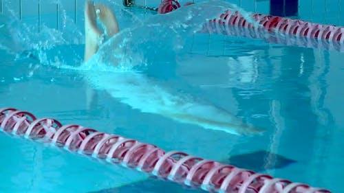 Girl Swimmer Dive In Swimming Pool. Female Swimmer Dives in Swimming Pool for a Swim Exercise. Top