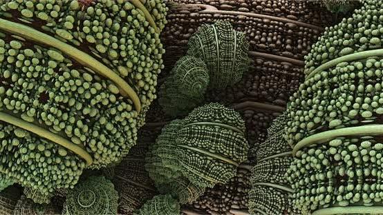 Fungi, Microscopic Microbes Macro Movement Effect