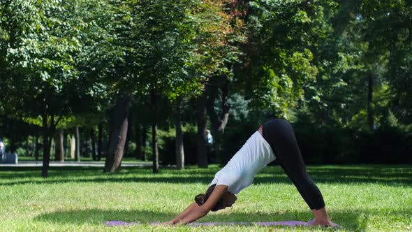 Thumbnail for Young Attractive Woman Stretching, Exercising in the Park. Yoga