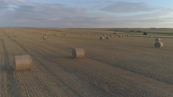 Thumbnail for Aerial view of a field with hay bales