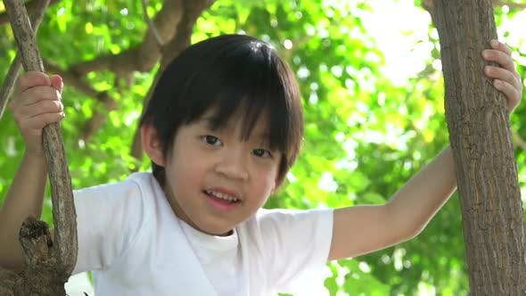 Netter asiatischer Junge klettert auf einen Baum im Park