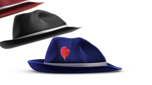Fedora Hats Swayed by Wind