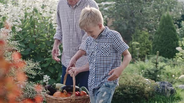 Cover Image for Little Boy and Elderly Man Carrying Basket with Harvest