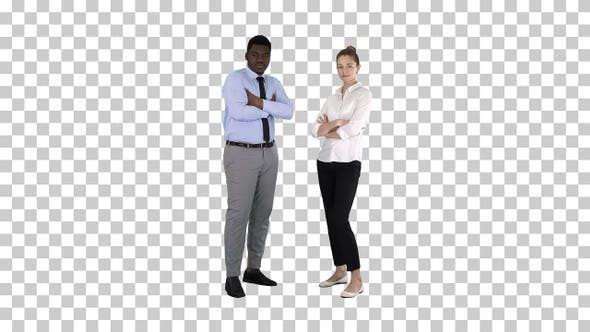 Thumbnail for International business people standing with folded arms Alpha