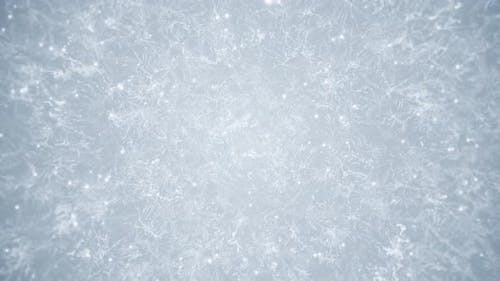 White Frost Winter Background