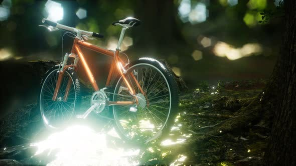 Thumbnail for Mountain Bike on the Forest Path