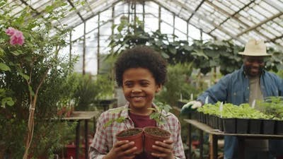 Afro-American Boy Helping Family in Greenhouse