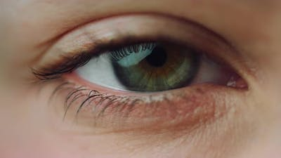 Macro of Closed Beauty Female Eye