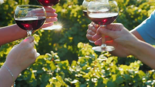Thumbnail for A Group of Friends Clink Glasses with Red Wine on the Background of the Vineyard. Wine Tour and