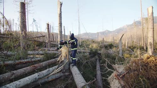 Firefighters With Oxigen Masks In Calamity Area