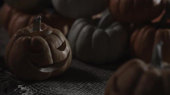 Thumbnail for Jack O Lantern Pumpkins