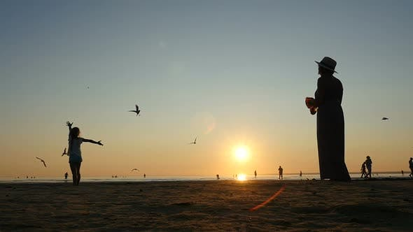 Thumbnail for Young Mother With Children Feeding Seagulls On The Seashore. Summertime Evening.