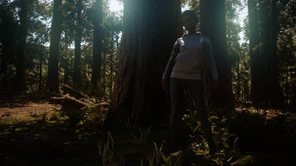 Thumbnail for Woman in Yosimite National Park Near Sequoia
