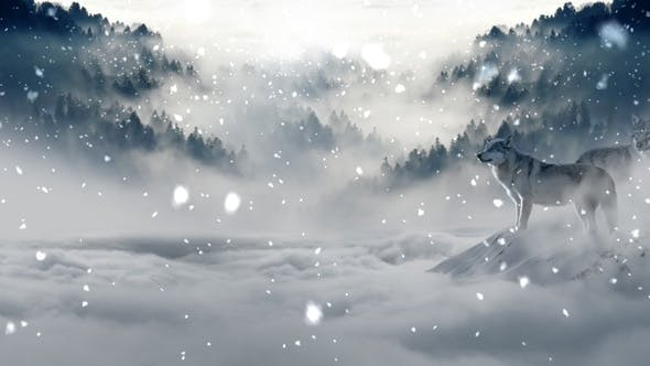 Thumbnail for 12 Snow Backgrounds Pack