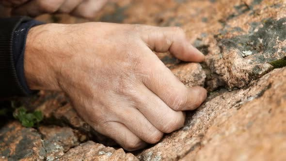 Close-up of the Hand of a Male Climber Holding on To a Rocky Ledge