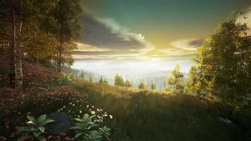 mountain top sunrise