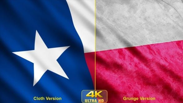Thumbnail for Texas State Flags