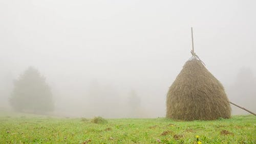 Autumn Misty Morning Agricultural Countryside Far Meadow with Large Hay Bales