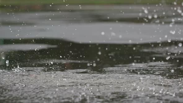 Thumbnail for Running on Wet Asphalt