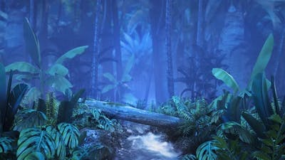 Night Tropical Jungle with a Brook