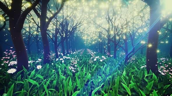 Thumbnail for Magic Garden Walk