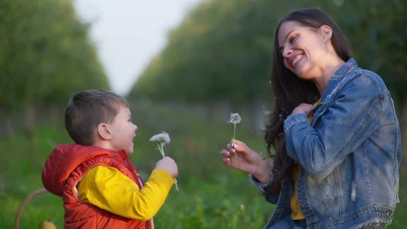 Mom Enjoys Playing in Garden with Son and Cheerfully Blowing Dandelions in Each Others Faces During
